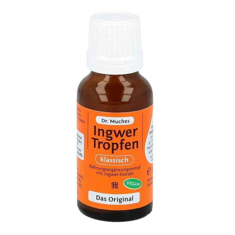 Ingwertropfen Doktor Muches 20 ml apotheke.at