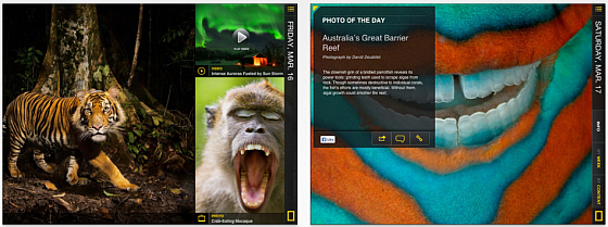National Geographic Today - iPad App Screenshots