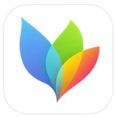 MindNodes App Icon