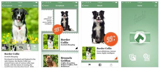 Fetch! erkennt die Hunderasse wenn Du mit dem iPhone einen Hund fotografierst.