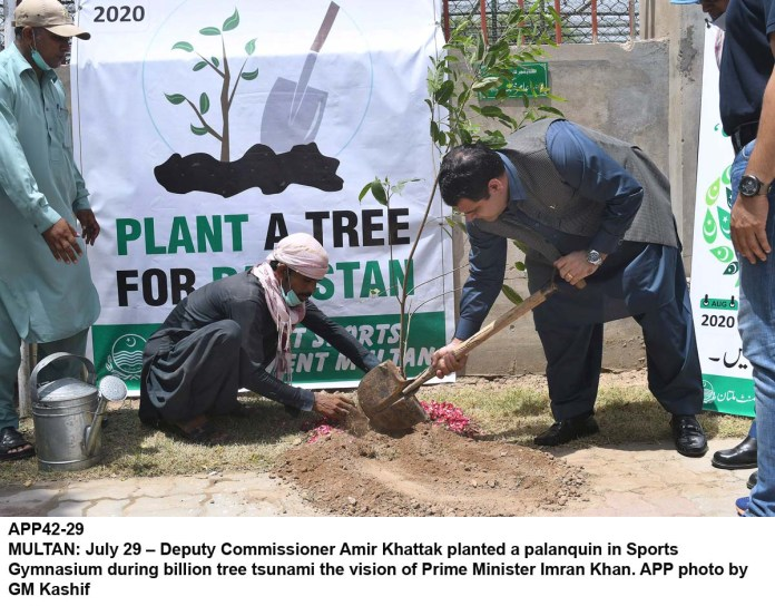 MULTAN: July 29 – Deputy Commissioner Amir Khattak planted a palanquin in Sports Gymnasium during billion tree tsunami the vision of Prime Minister Imran Khan. APP photo by GM Kashif