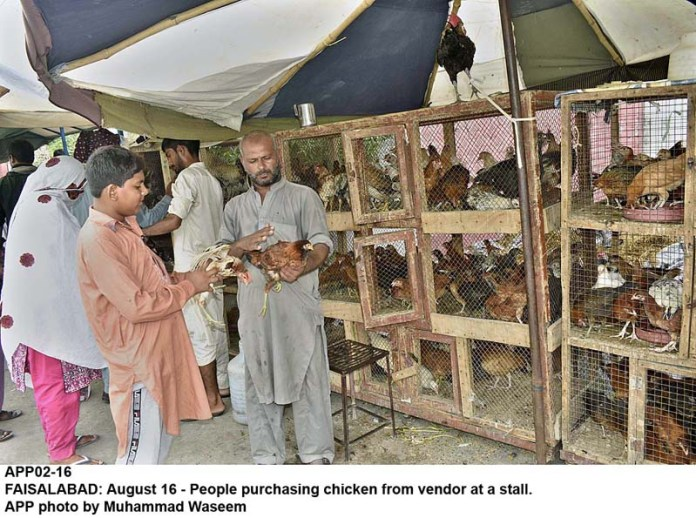 FAISALABAD: August 16 - People purchasing chicken from vendor at a stall. APP photo by Muhammad Waseem