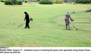 RAWALPINDI: August 17 – Gardeners busy in trimming the grass from greenbelt along Airport Road. APP photo by Abid Zia