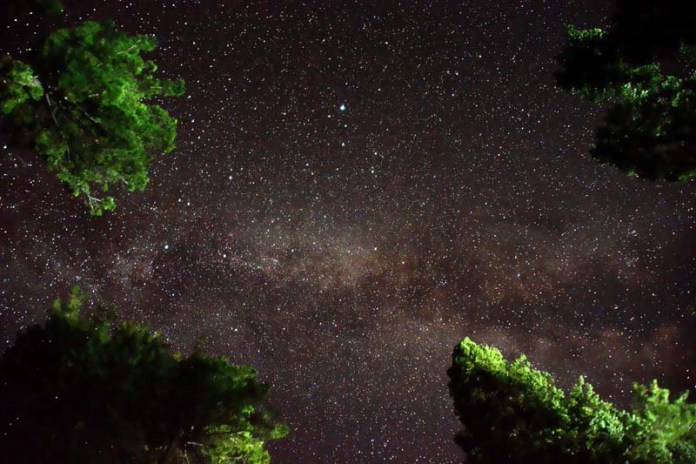 ASTORE: September 17 - A beautiful view of Milky Way Galaxy over the pine trees in the sky during night time at Rama Valley. APP photo by Sadia Haidari