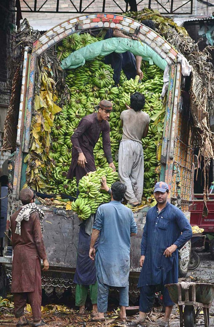 PESHAWAR: September 01 - Labourers unloading bananas from delivery truck at Fruit Market. APP photo by Shaheryar Anjum