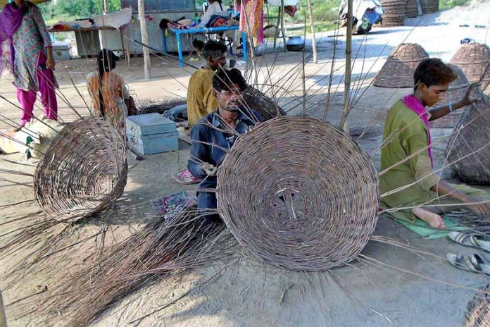 CHINIOT: September 08 – Gypsy family knitting the traditional baskets with dry tree branches to attract the customers at their roadside setup. APP photo by Muhammad Ali