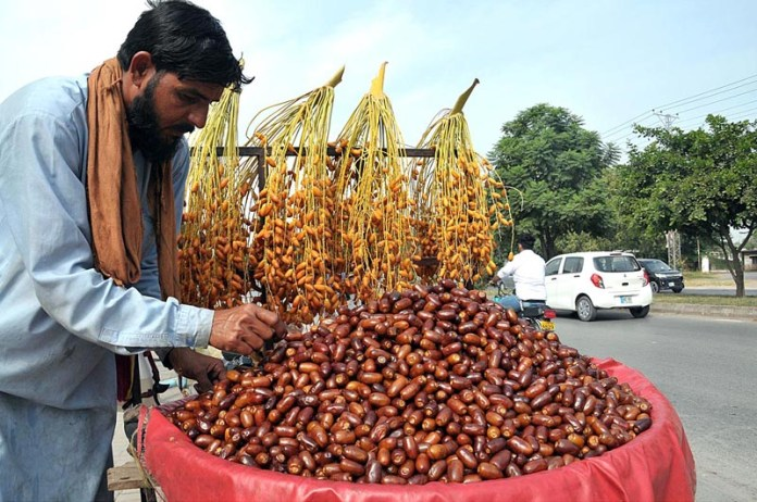 ISLAMABAD: October 13 – A street vendor displaying and arranging fresh dates to attract the customers. APP photo by Saeed-ul-Mulk