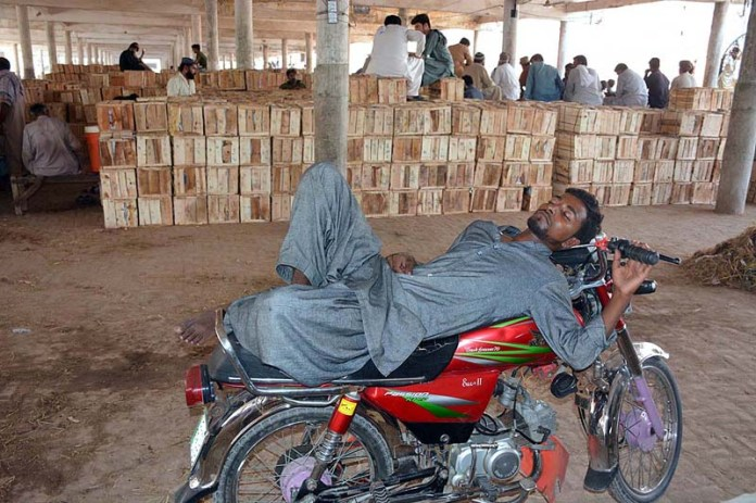 FAISALABAD: October 13 - A labourer enjoying a nap on his motorcycle at Fruit & Vegetable Market Sadhar Jhang Road. APP photo by Tasawar Abbas