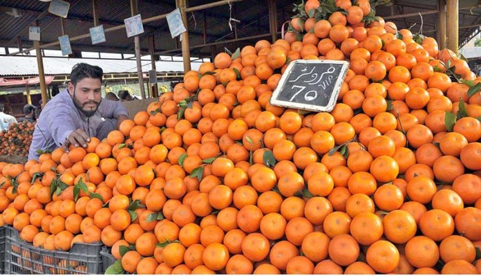 A stall holder displaying oranges to attract the customers at weekly Sunday Bazaar