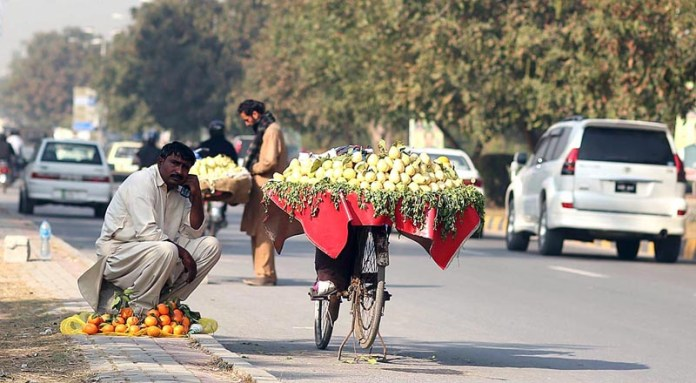 A vendor displaying seasonal fruits to attract the customers at his roadside setup