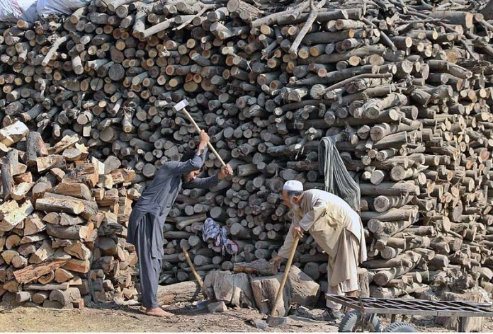 Labourers busy in chopping wood into pieces at their workplace