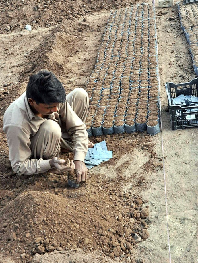 A worker filling mud into plastic bags for plantation of seasonal plants at his workplace