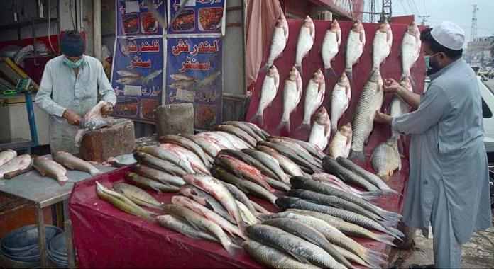 A vendor displaying fishes to attract the customer at Charsadda Road