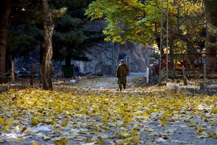 NARAN: November 02 – A person passing through the fallen leafs in Naran Valley. APP photo by Irshad Sheikh
