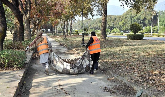 CDA staffers collecting fallen dry leaves from roadside greenbelts