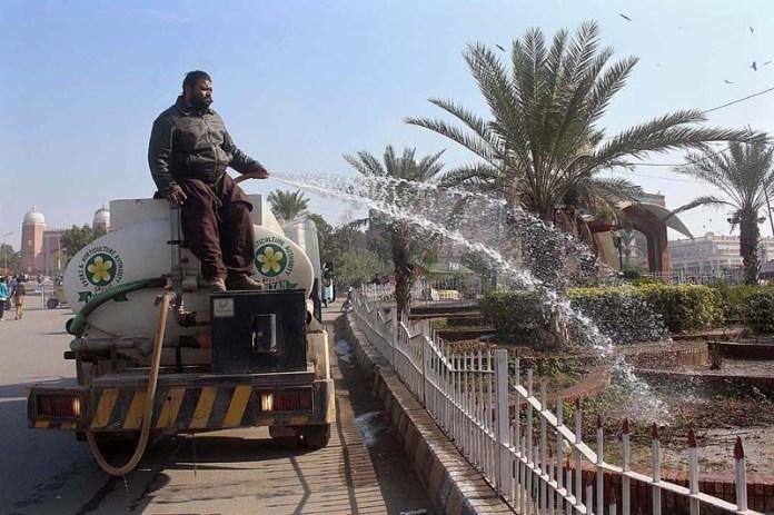 PHA staffer busy in showering water on plants at roadside greenbelt