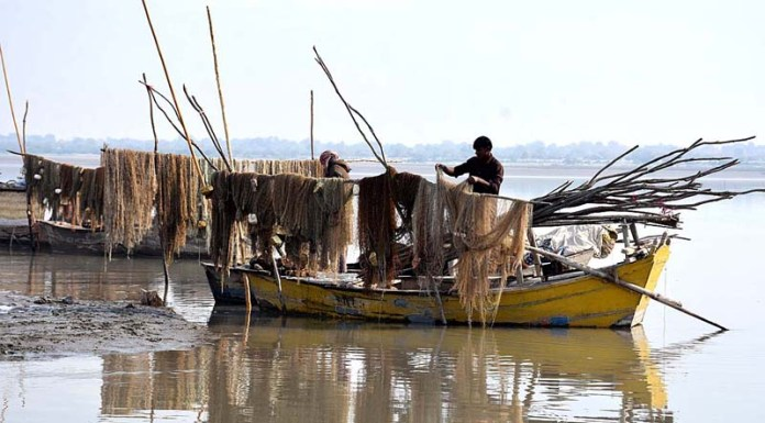 A fisherman spreading and repairing nets on his parked boats at right bank of Indus River near Aqil Village