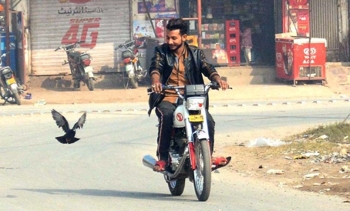 A trained pigeon flying with his owner at Jail Road