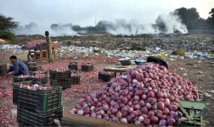 Labourers sorting good quality of onions at Singhpura Vegetable and Fruit Market as in the background a view of burning garbage causing environmental pollution and attention of concern authorities