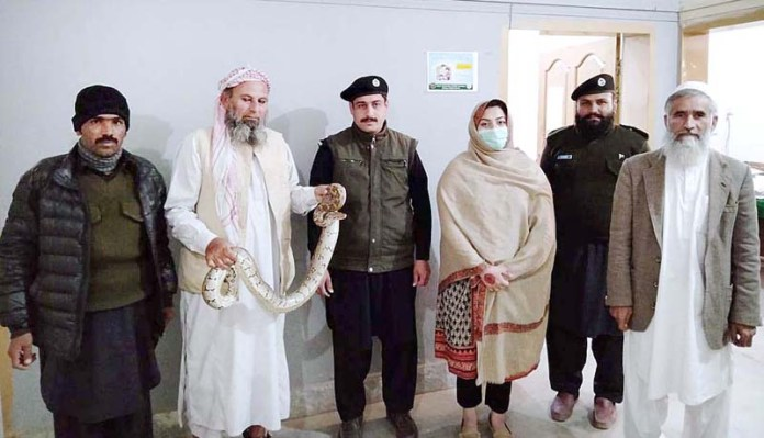 Khyber Pakhtunkhwa Female Wildlife Officer, Manahil Wahab other officials presenting a snake charmer in front of media personnel who was arrested for keeping a python in his possession. Manahil Wahab has made a record of registering 581 cases against poachers and offenders of Wildlife Act 2015 during the last six months after assuming the charge of Sub-Divisional Wildlife Officer D.I. Khan