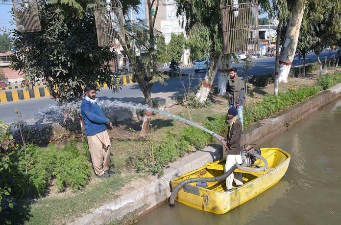 PHA workers watering plants along Rakh Branch Canal