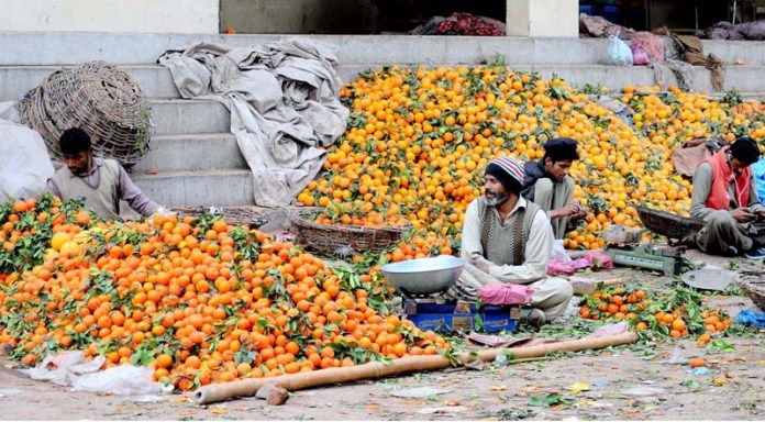 Vendors waiting for customers to sell seasonal fruit orange at the fruit market