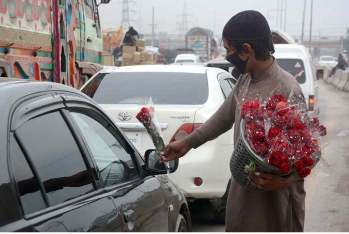 Youngster is selling and displaying red rose's in a basket to attract the customer near Pir Zakori Flyover Ring Road