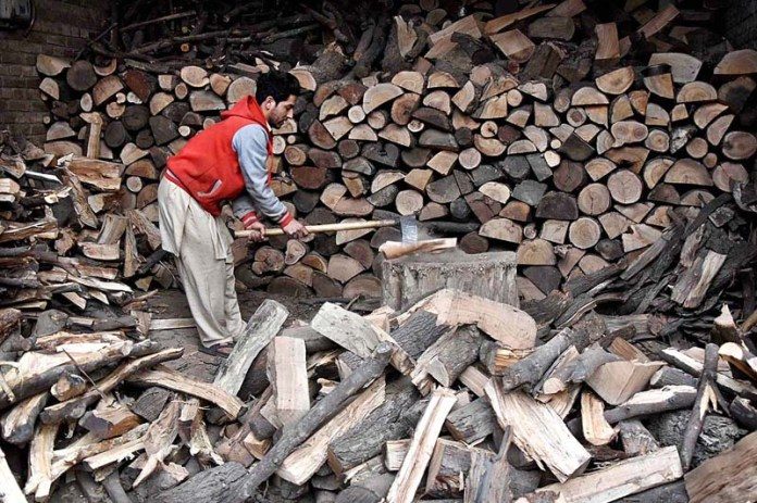 A vendor busy in chopping wood into pieces at his warehouse in Provincial Capital