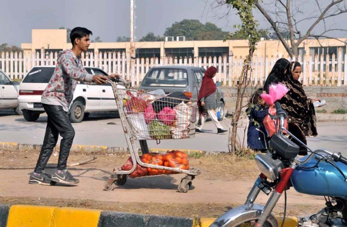A youngster pushing handcart loaded with fruits and vegetables after purchasing from Sunday Bazaar