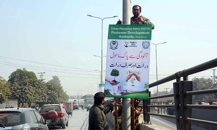 PDA staffers fixing awareness drive banners for urban plantation in city