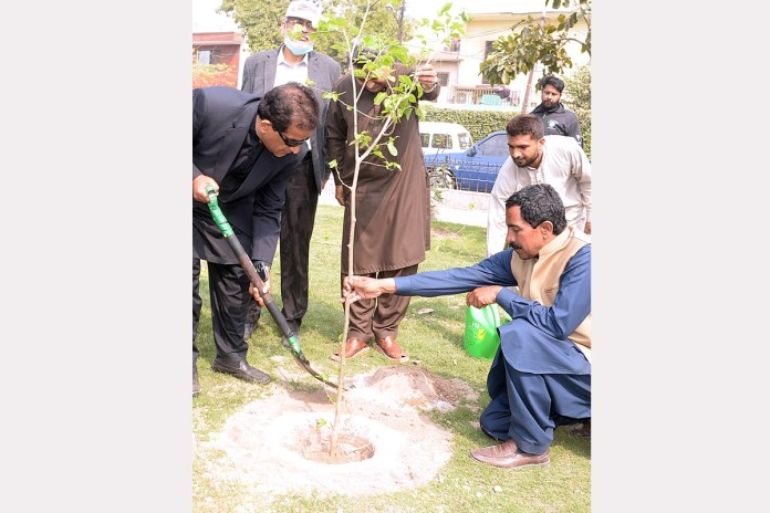 Tree plantation vital for green future of Pakistan: Amin Aslam