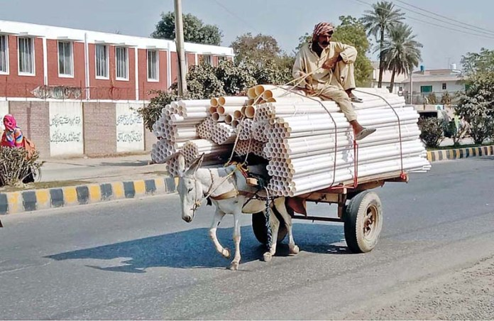 A donkey driven cart on the way loaded with plastic pipes