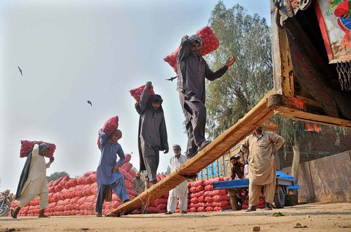 Labourers loading onions filled bags to a delivery truck at Vegetable Market