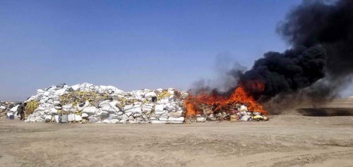 Pak Army, FC and ANF officials burning huge quantity of drugs near Pak Afghan border