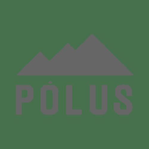 Bucholz_logo_Polus másolat