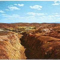 Copperhill - A Legacy
