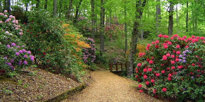 Gardens North Ga