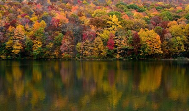 Beautiful Autumn Colors & Water Reflections - Upper Norton Reservoir
