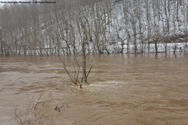 Clinch River In Moderate Flood Near Speers Ferry In Scott County VA - March 9, 2015