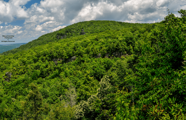 Rugged Pickem-Stone Mountain of High Knob Massif