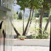 casa vacanza Isola d'Elba - Il Fico 2