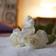 Villa Raffaelli - Rose