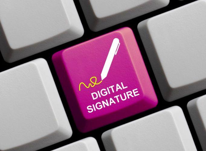 E Signatures role in startups