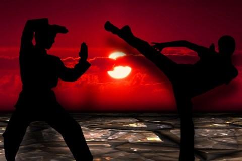 martial arts social media marketing