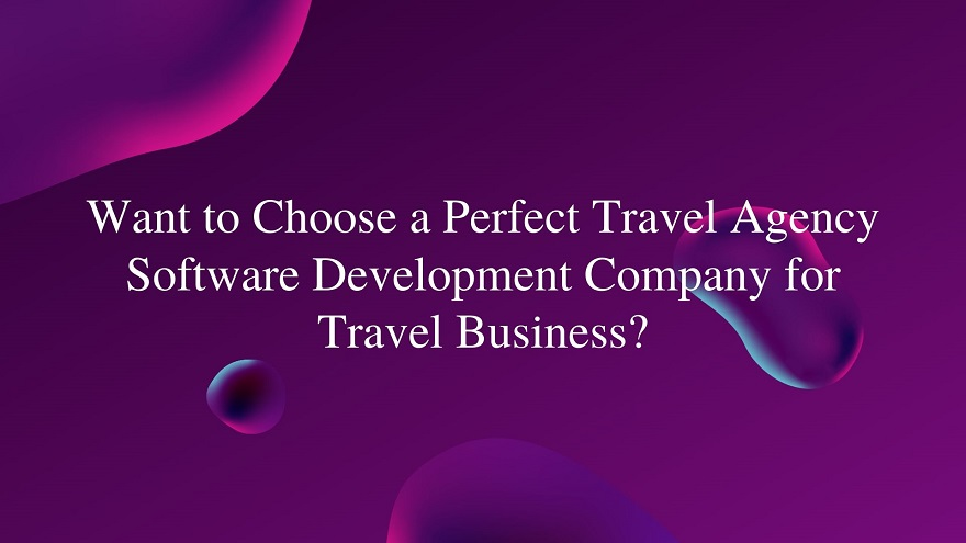 How to choose a perfect travel agency software development company for travel business?