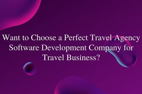 travel agency software development