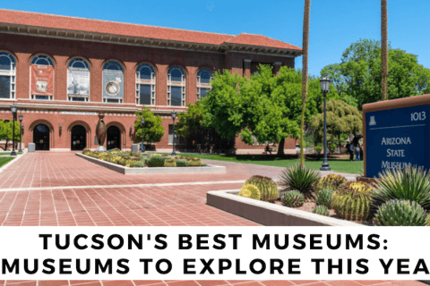 tucsons best museums