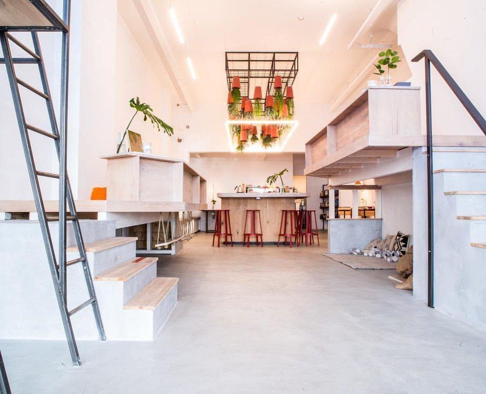 Establishing a Healthier Environment in Your Home