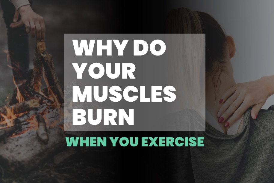Why Do Your Muscles Burn When You Exercise