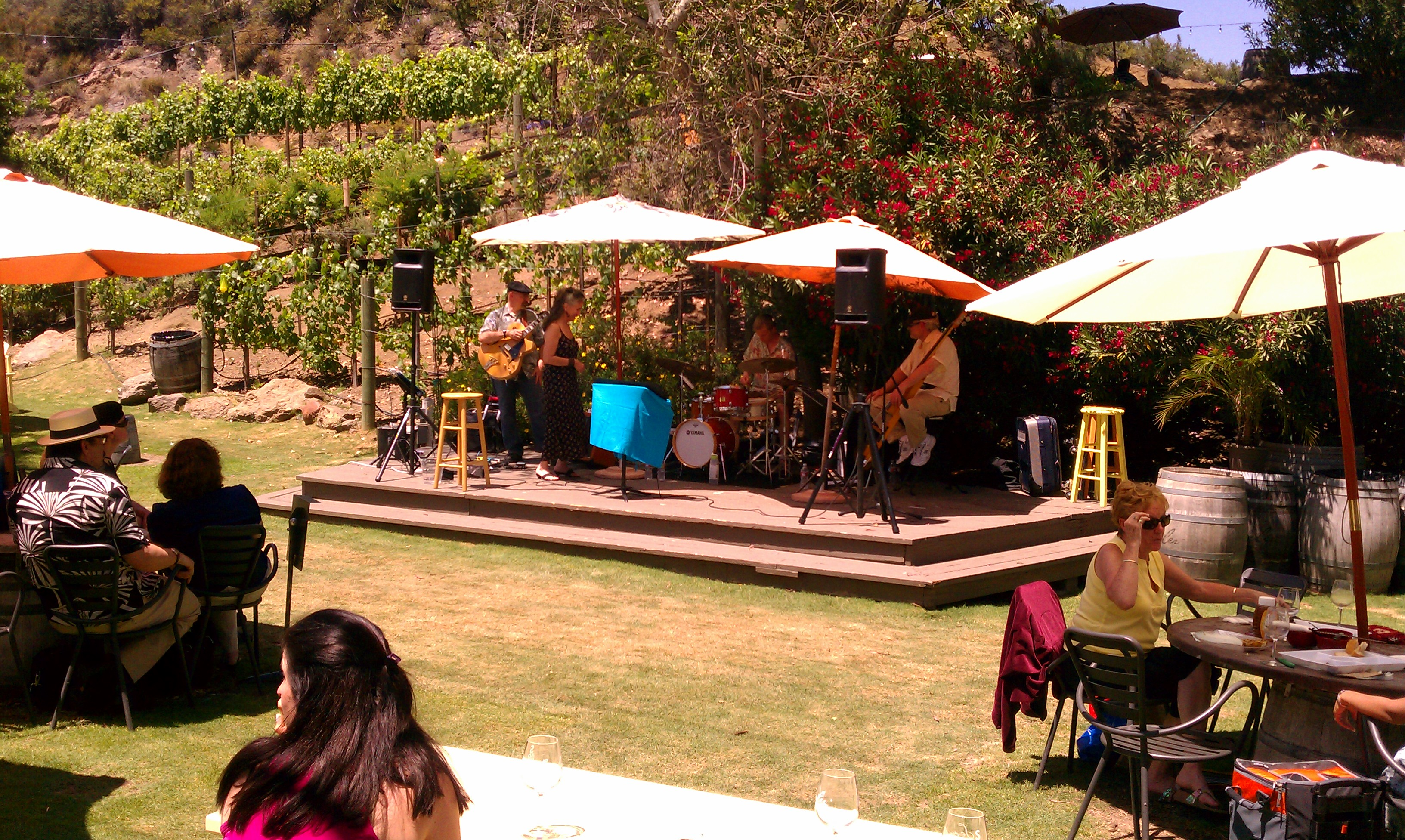 Jazz Band The Appellation Trail